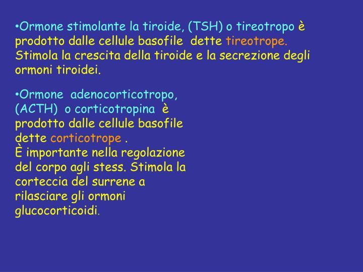 Ormone stimolante la tiroide, (TSH) o tireotropo