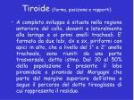 tiroide forma posizione e rapporti