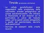 tiroide produzione calcitonina