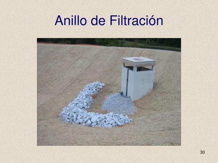 Anillo de Filtración
