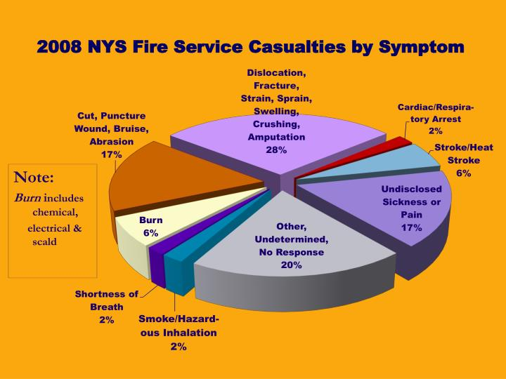 2008 NYS Fire Service Casualties by Symptom