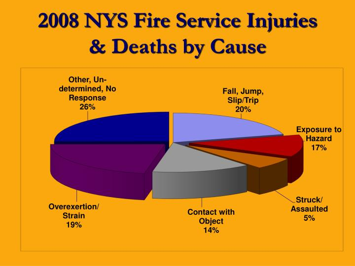 2008 NYS Fire Service Injuries