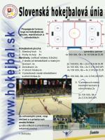 propag cia formou loga na hokejbalovej ploche mantineloch a strieda k ch