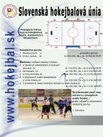 propag cia formou loga na hokejbalovej ploche mantineloch a strieda k ch1