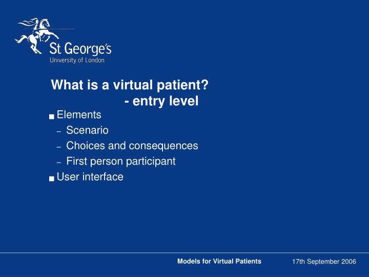 What is a virtual patient entry level