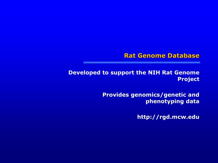 Rat Genome Database