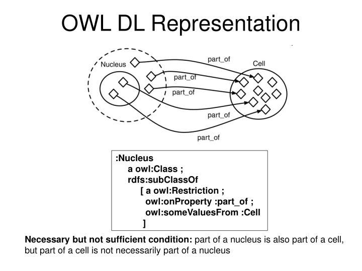 OWL DL Representation