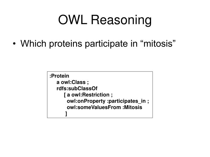 OWL Reasoning