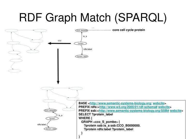 RDF Graph Match (SPARQL)