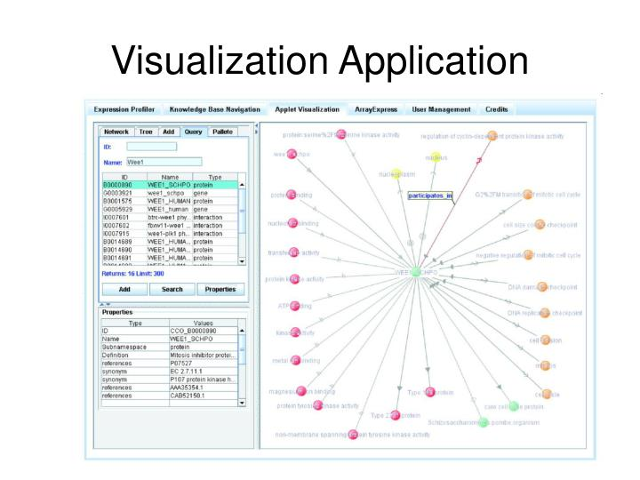 Visualization Application