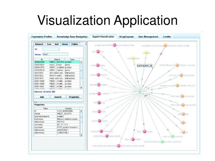 Visualization Application