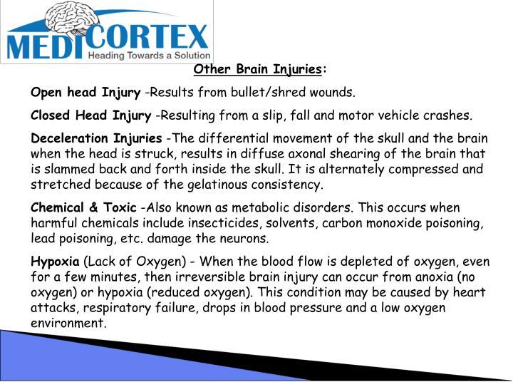 Other Brain Injuries