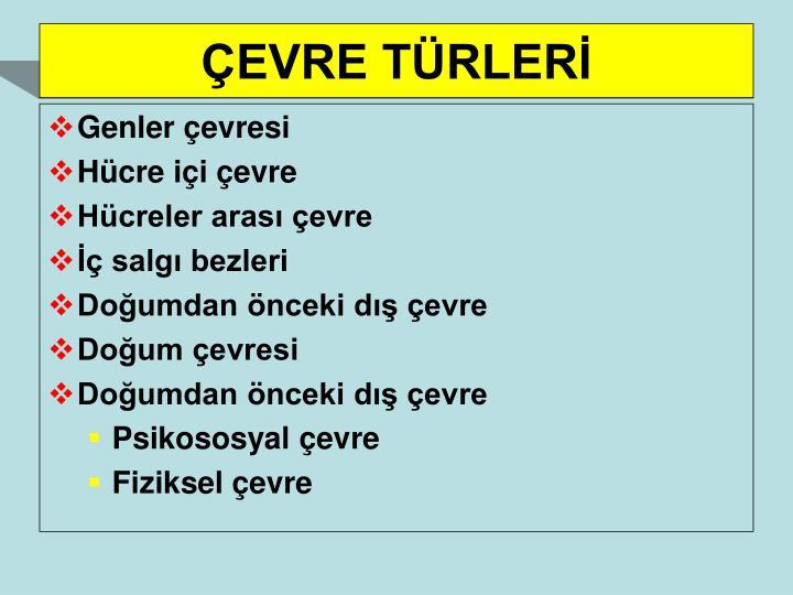 ÇEVRE TÜRLERİ