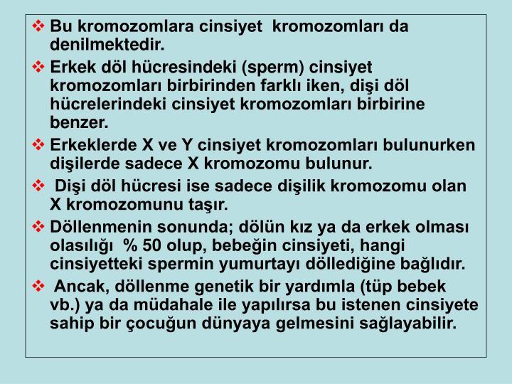 Bu kromozomlara cinsiyet  kromozomları da denilmektedir.