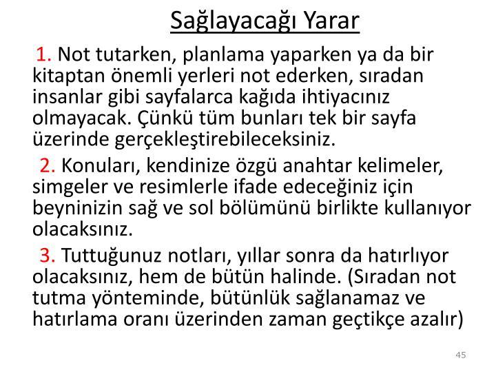 Salayaca Yarar
