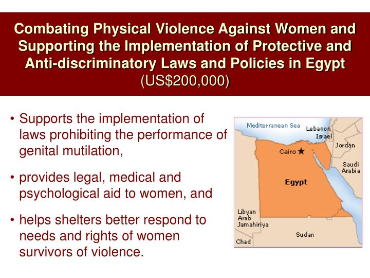 Combating Physical Violence Against Women and Supporting the Implementation of Protective and Anti-discriminatory Laws and Policies in Egypt