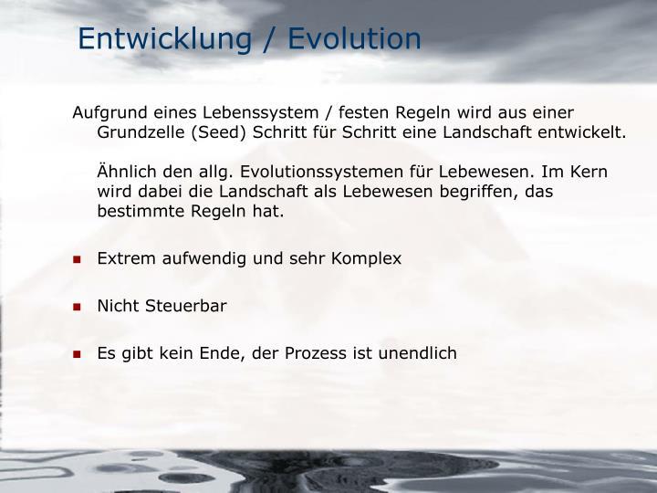 Entwicklung / Evolution