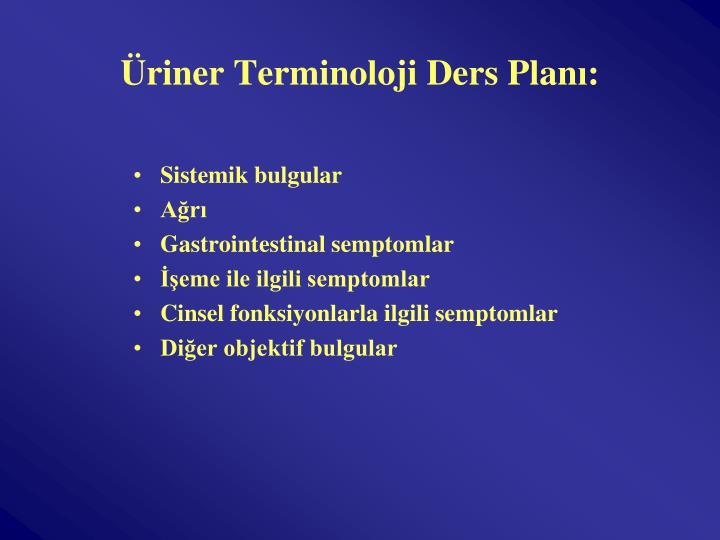 Üriner Terminoloji