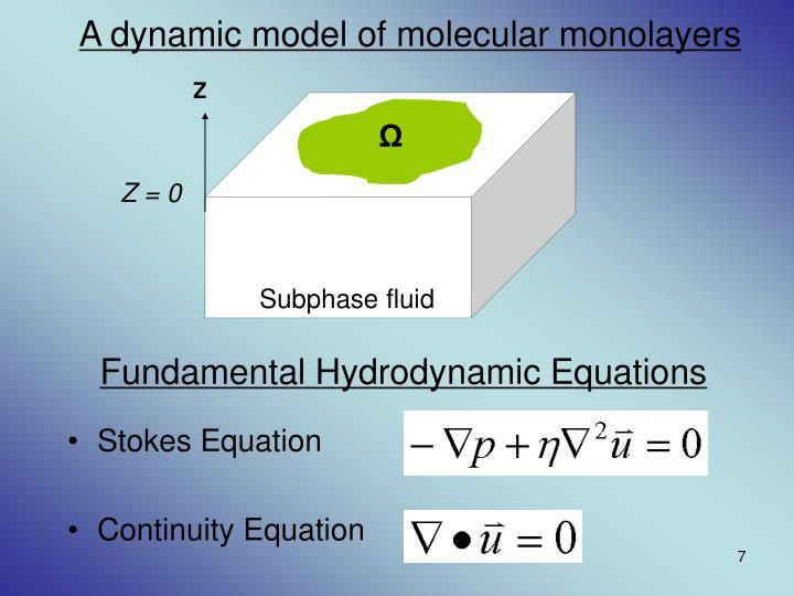 A dynamic model of molecular monolayers