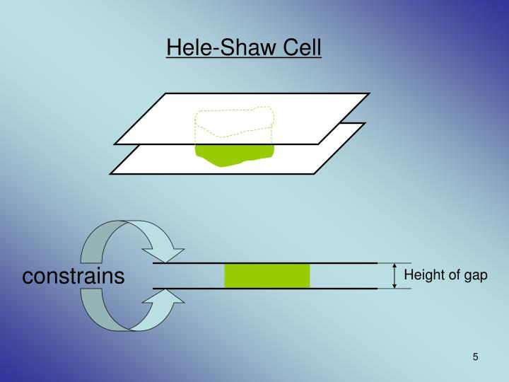 Hele-Shaw Cell