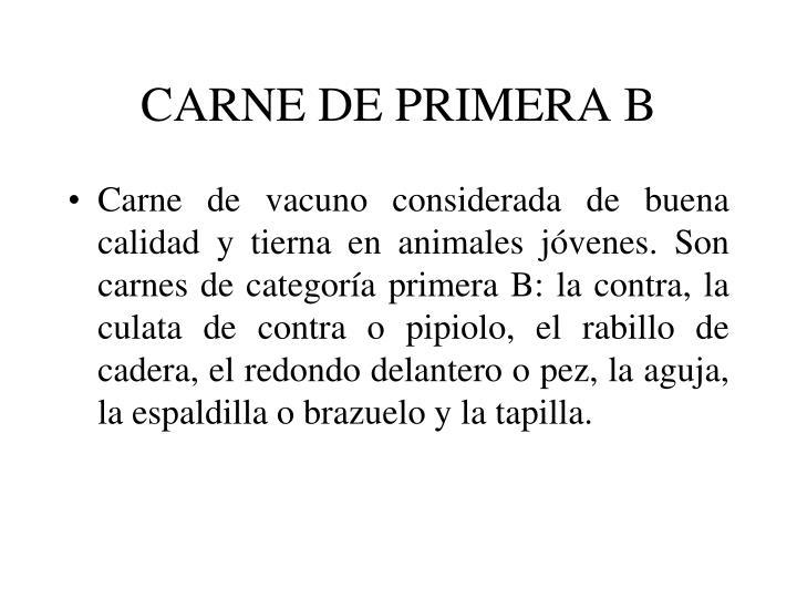 CARNE DE PRIMERA B