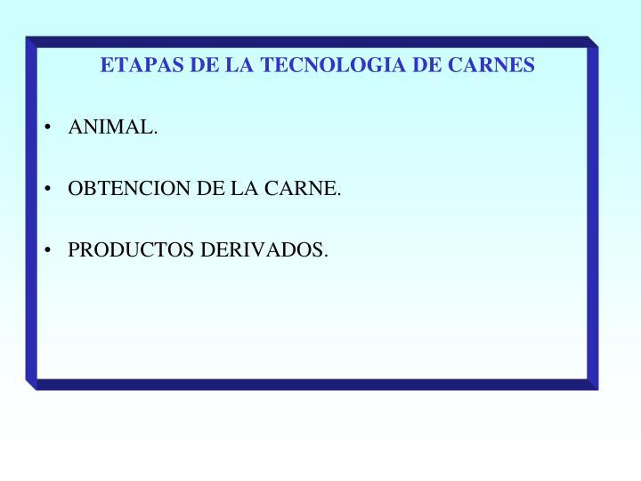 ETAPAS DE LA TECNOLOGIA DE CARNES