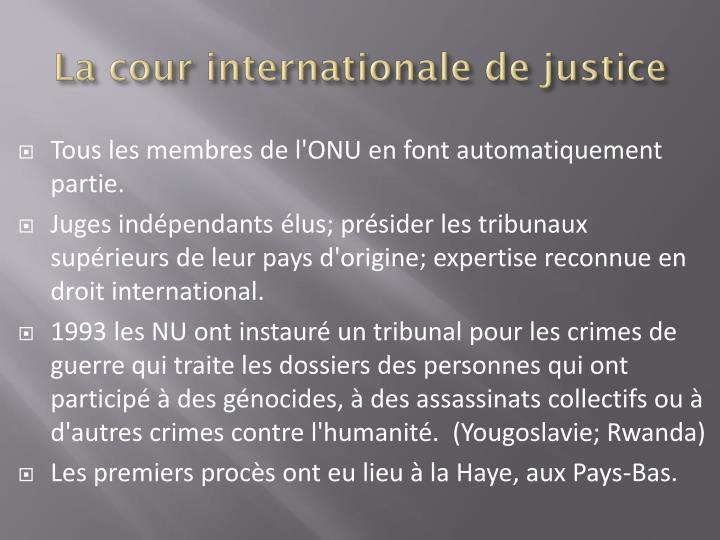 La cour internationale de justice