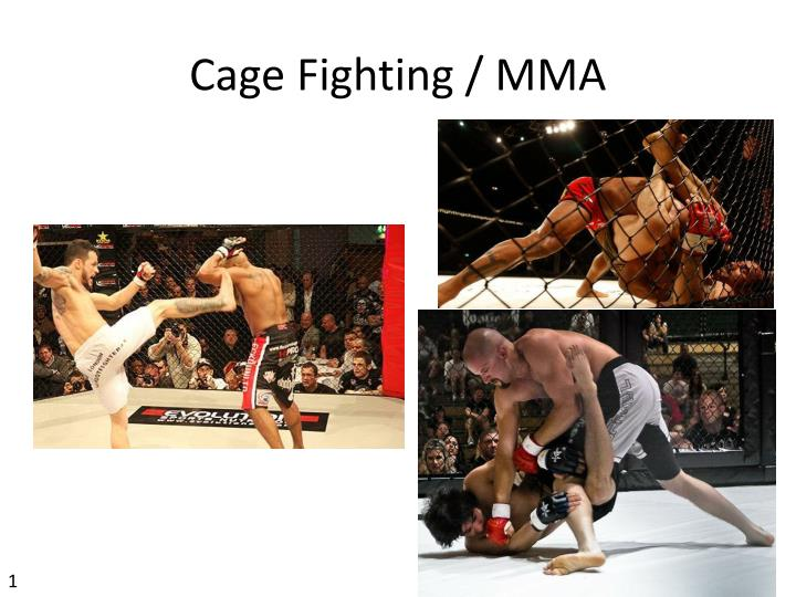 Cage fighting mma