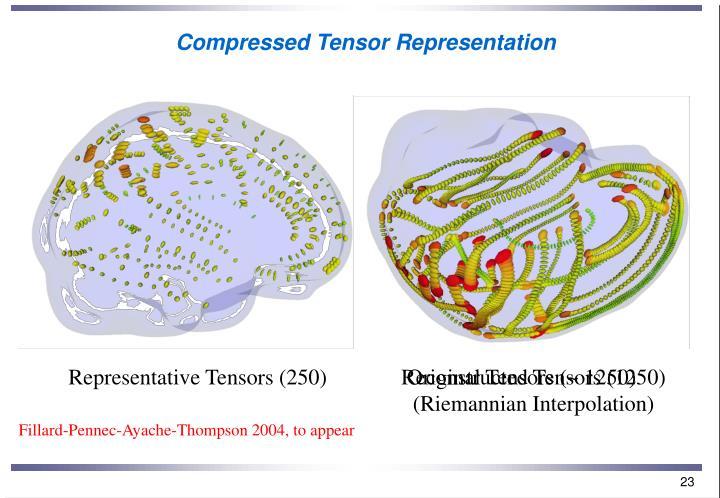 Compressed Tensor Representation