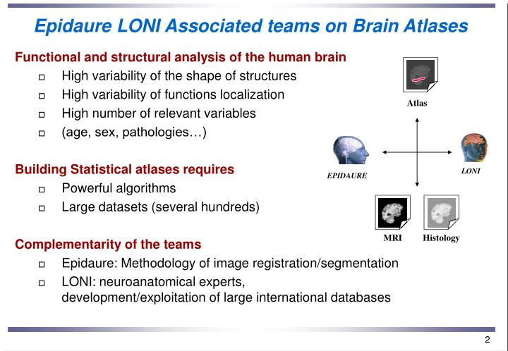 Epidaure loni associated teams on brain atlases