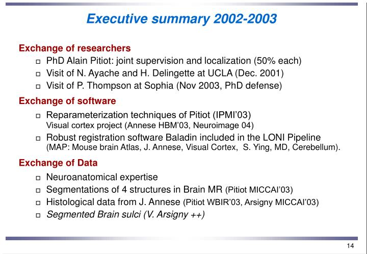 Executive summary 2002-2003
