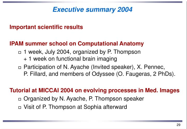 Executive summary 2004