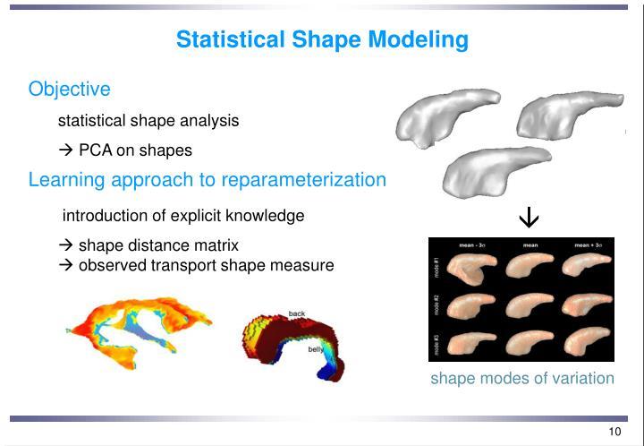 Statistical Shape Modeling