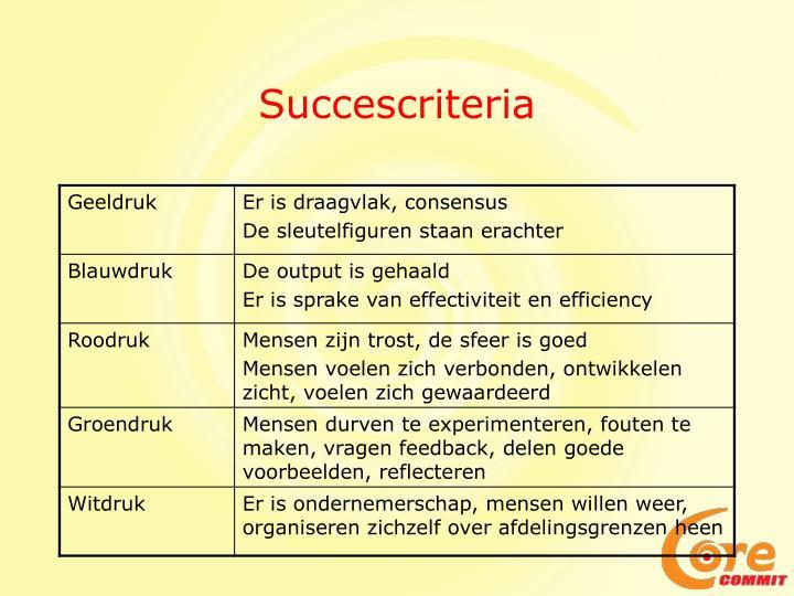 Succescriteria