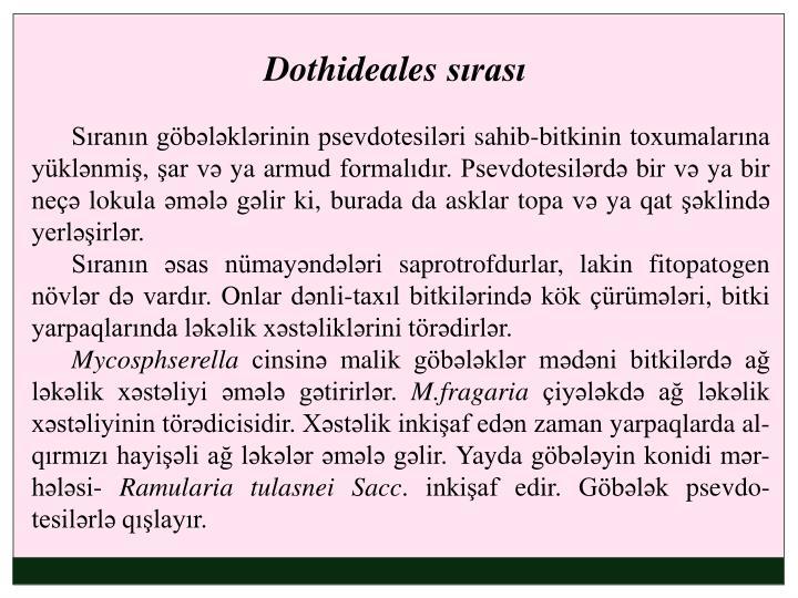 Dothideales