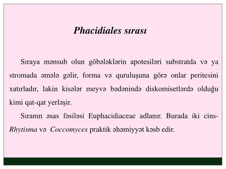 Phacidiales