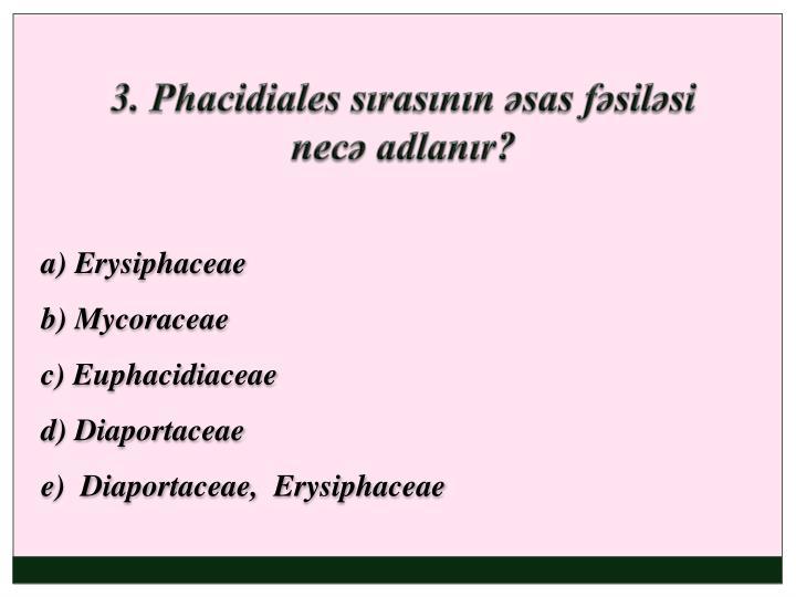 3. Phacidiales sırasının əsas fəsiləsi