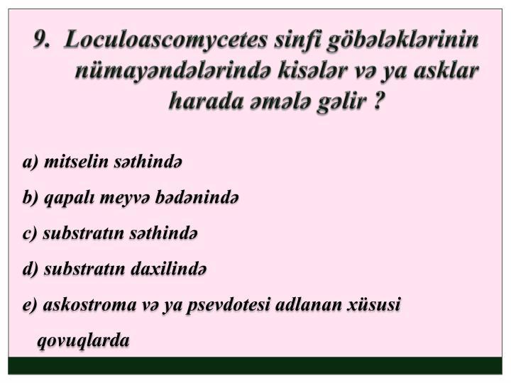 9.  Loculoascomycetes sinfi göbələklərinin nümayəndələrində kisələr və ya asklar harada əmələ gəlir