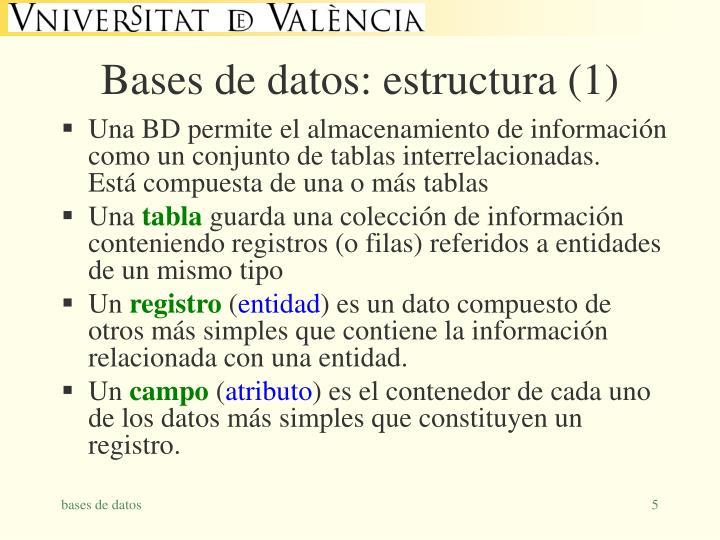 Bases de datos: estructura (1)