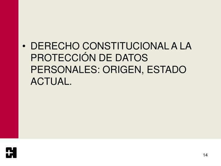 DERECHO CONSTITUCIONAL A LA PROTECCIÓN DE DATOS PERSONALES: ORIGEN, ESTADO ACTUAL.