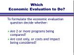 which economic evaluation to do