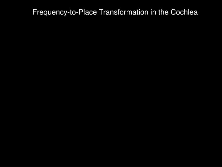 Frequency-to-Place Transformation in the Cochlea