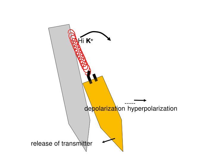 release of transmitter