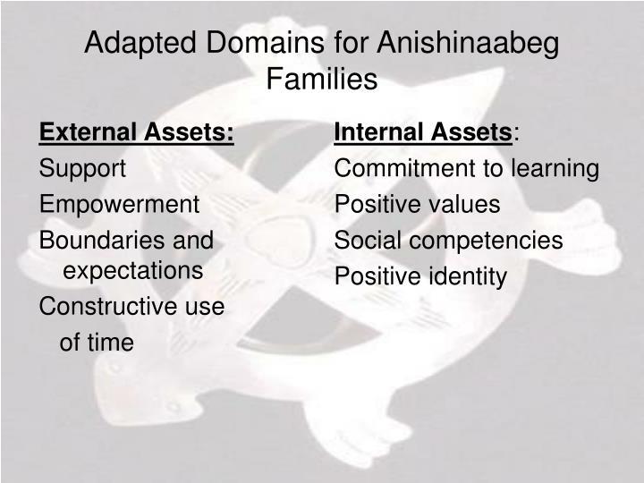External Assets: