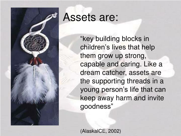 Assets are: