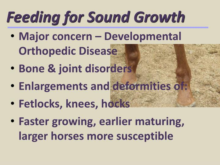 feeding for sound growth