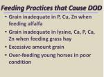 feeding practices that cause dod