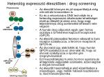 heterol g express z i leszt ben dr o g screening