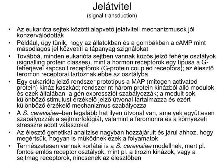 Jelátvitel