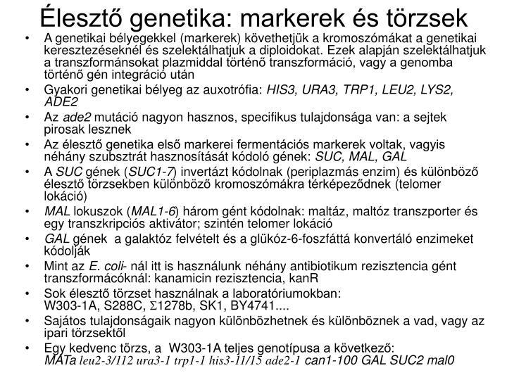 Élesztő genetika: markerek és törzsek
